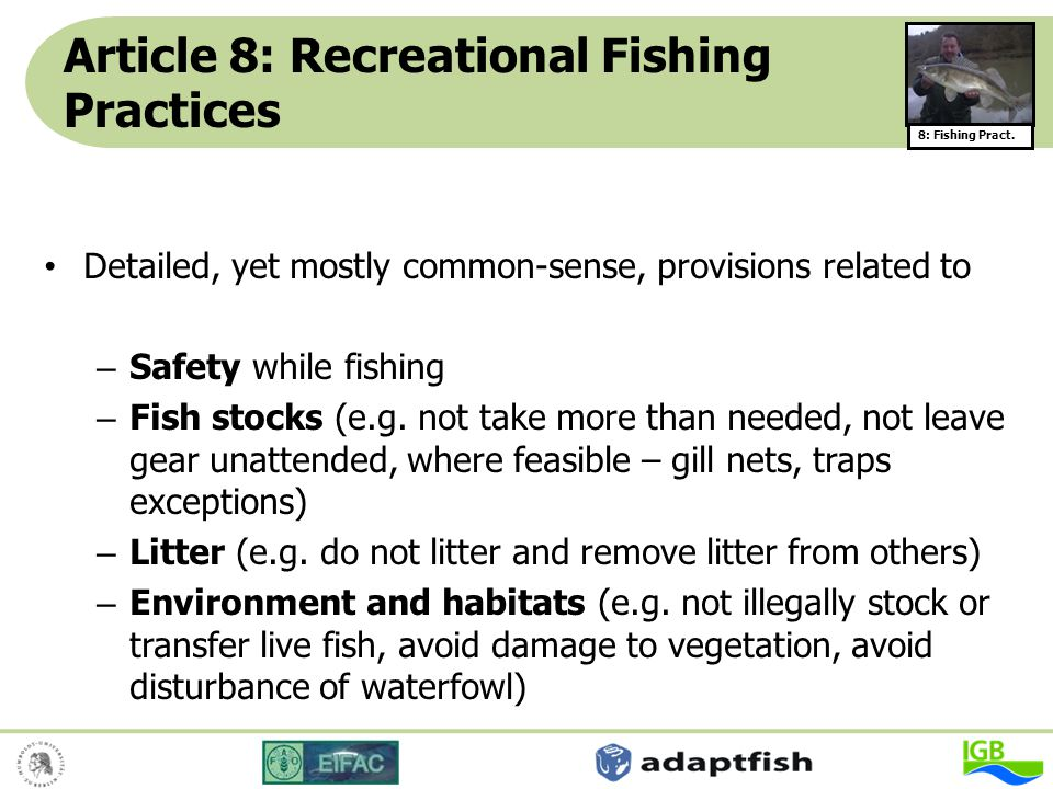 Article 8: Recreational Fishing Practices