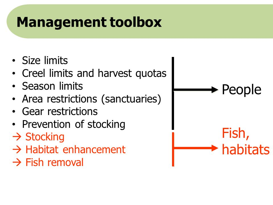 Management toolbox People Fish, habitats Size limits