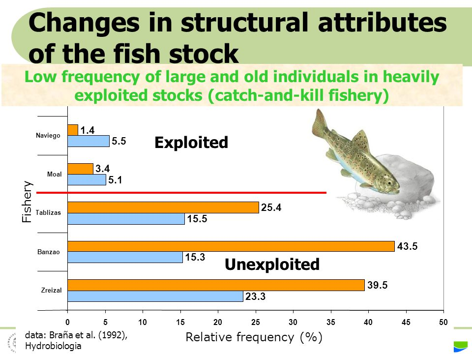 Changes in structural attributes of the fish stock