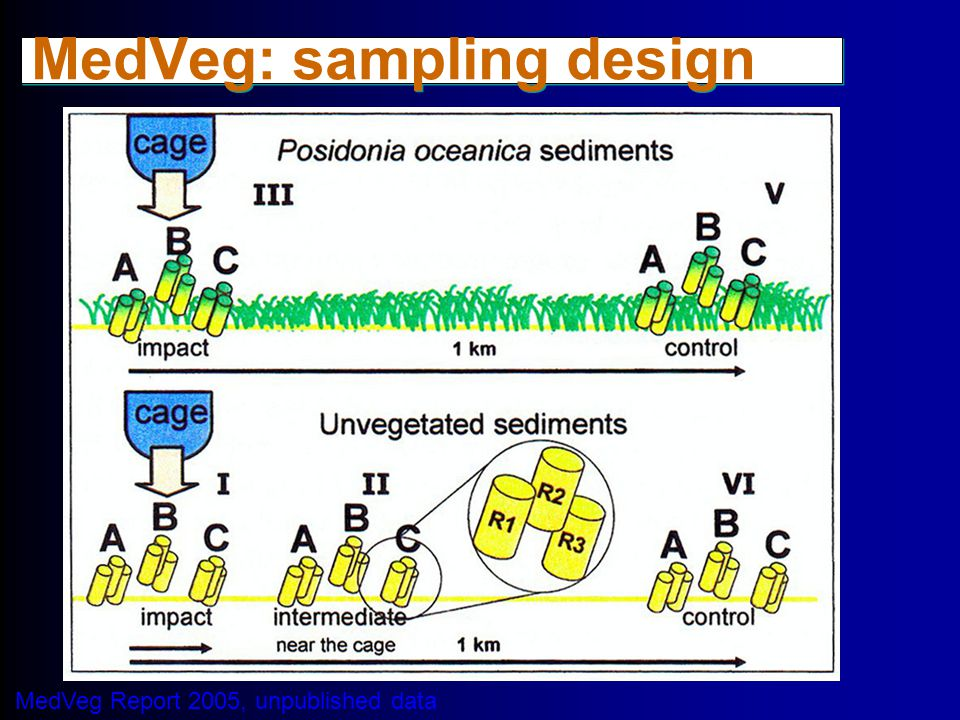 MedVeg: sampling design