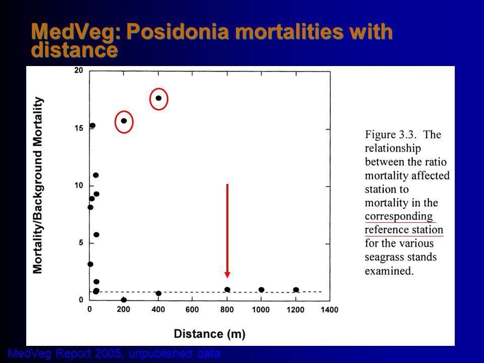 MedVeg: Posidonia mortalities with distance