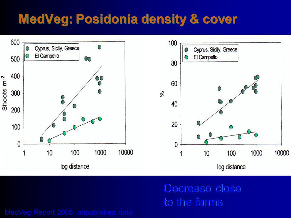 MedVeg: Posidonia density & cover