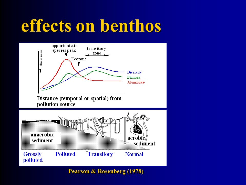 effects on benthos Pearson & Rosenberg (1978)