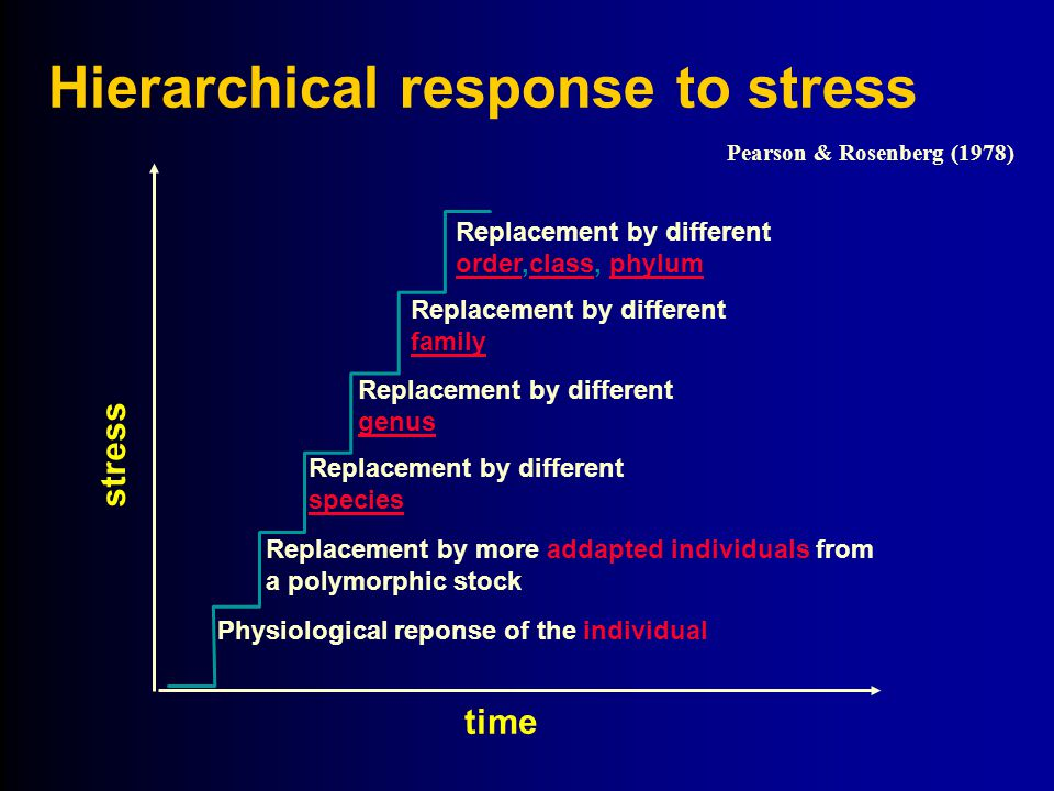 Hierarchical response to stress