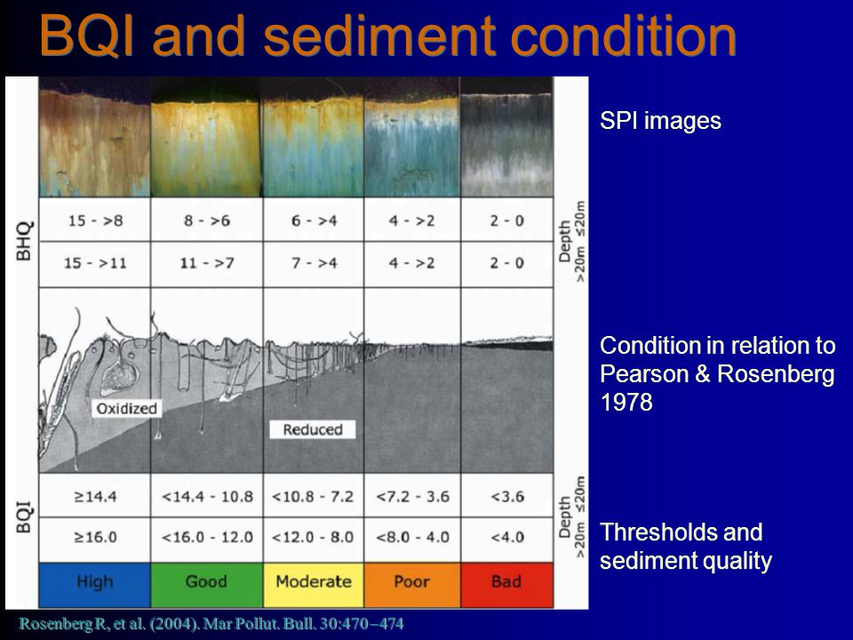 BQI and sediment condition