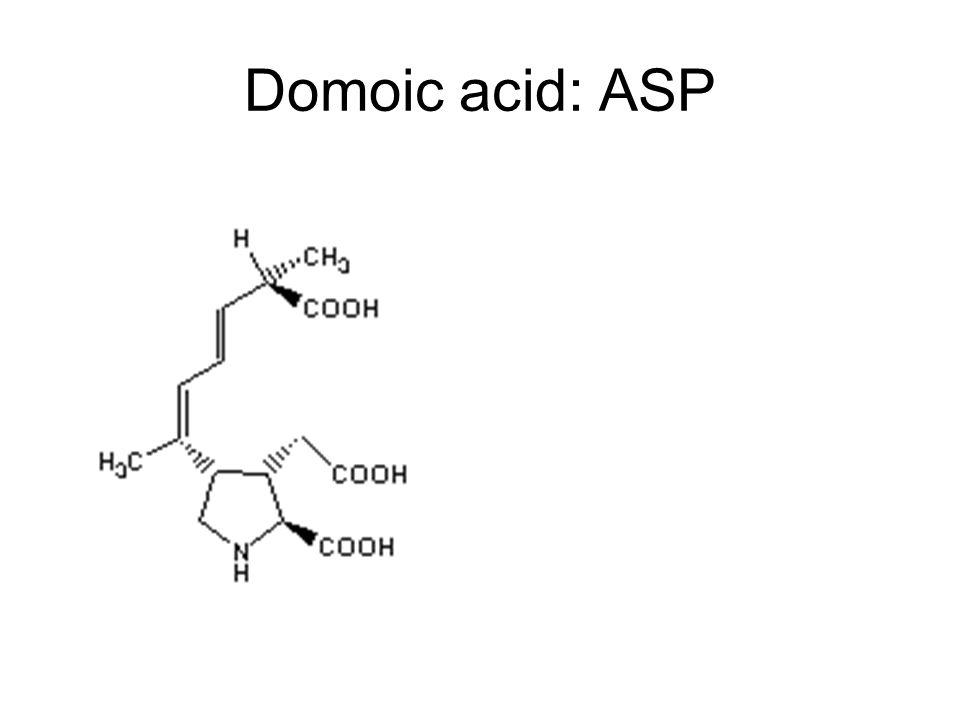 Domoic acid: ASP Kainic acid Glutamate