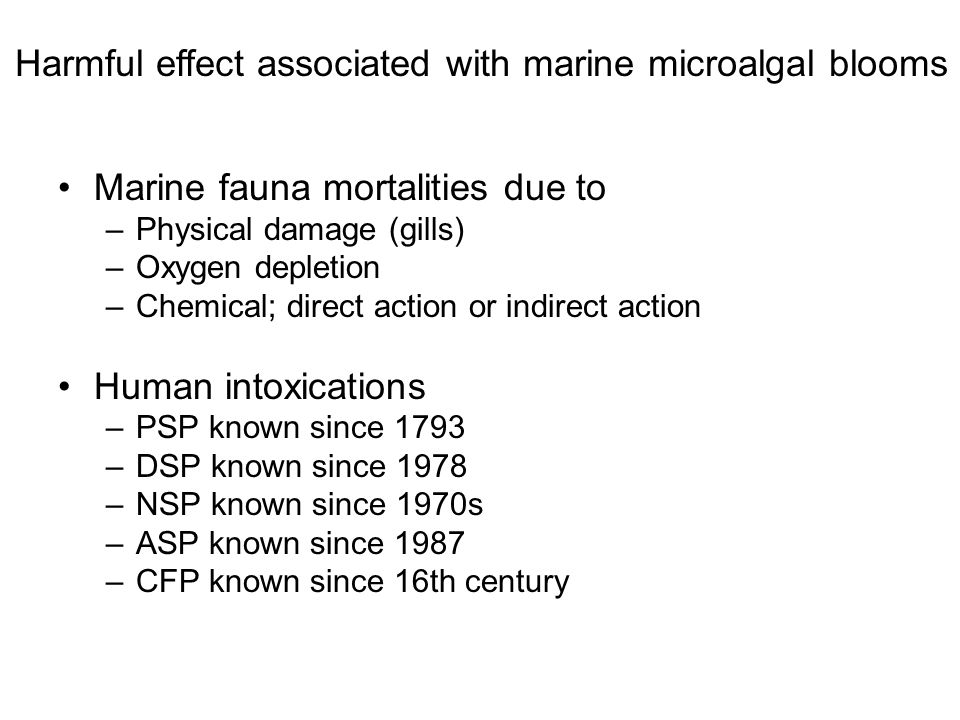 Harmful effect associated with marine microalgal blooms