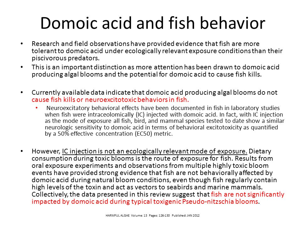 Domoic acid and fish behavior