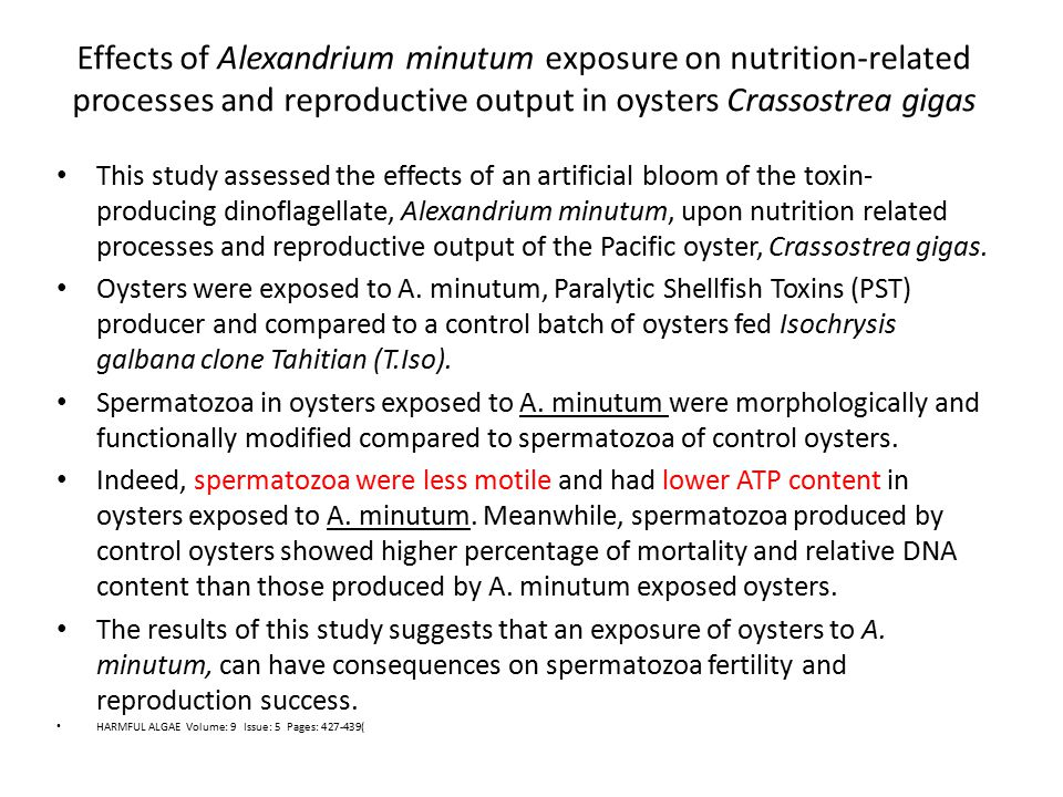 Effects of Alexandrium minutum exposure on nutrition-related processes and reproductive output in oysters Crassostrea gigas