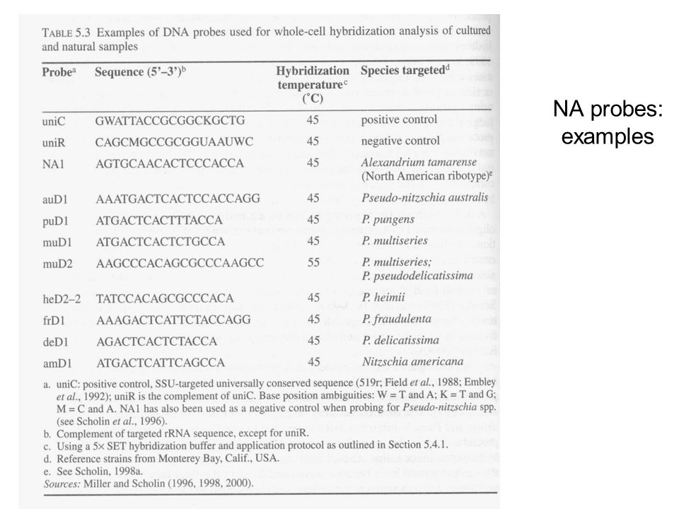 NA probes: examples Table 5.3