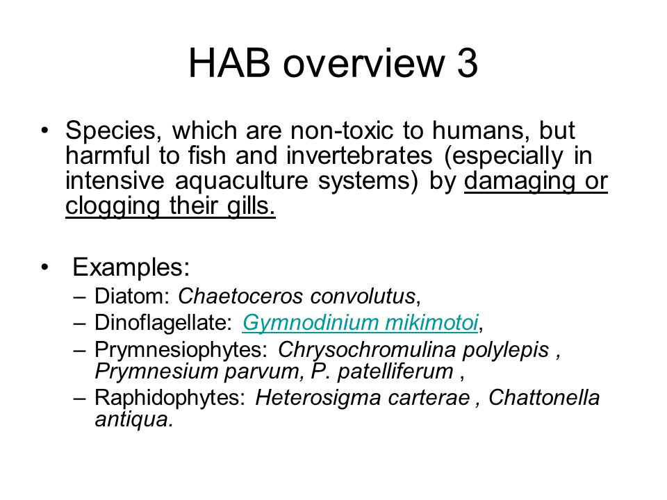 HAB overview 3