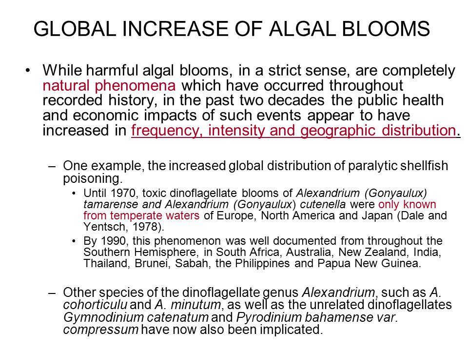 GLOBAL INCREASE OF ALGAL BLOOMS