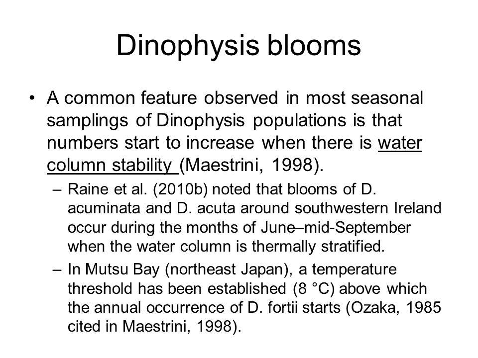 Dinophysis blooms