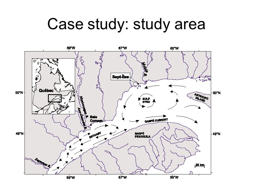 Case study: study area