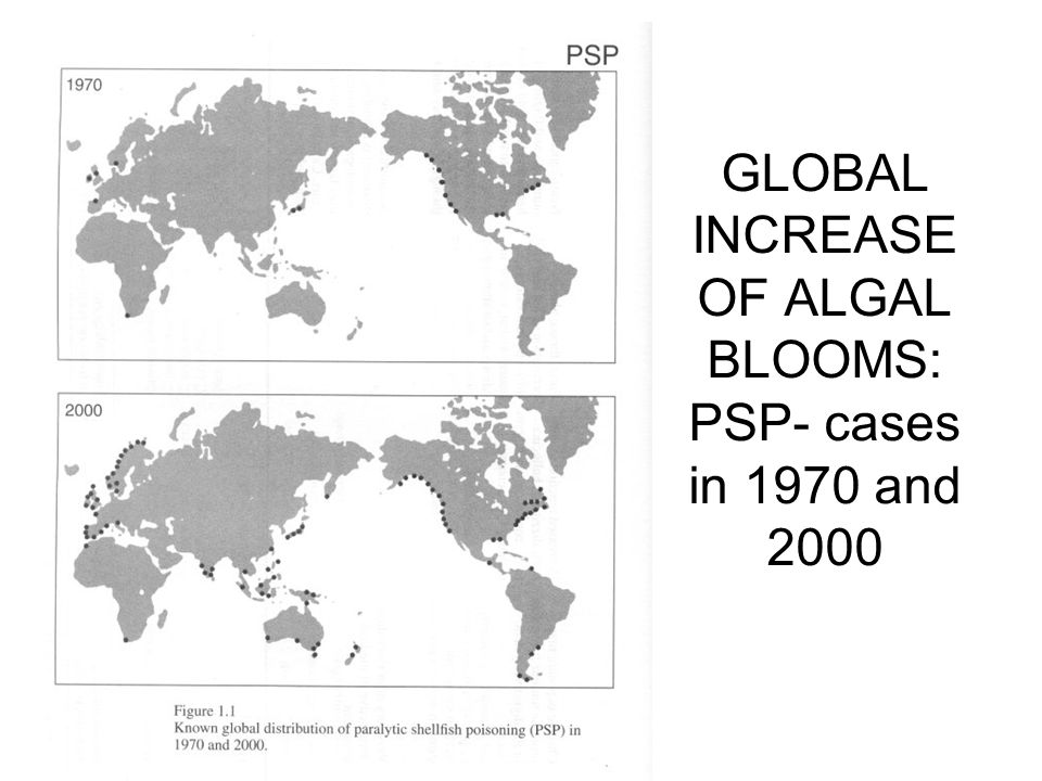 GLOBAL INCREASE OF ALGAL BLOOMS: PSP- cases in 1970 and 2000