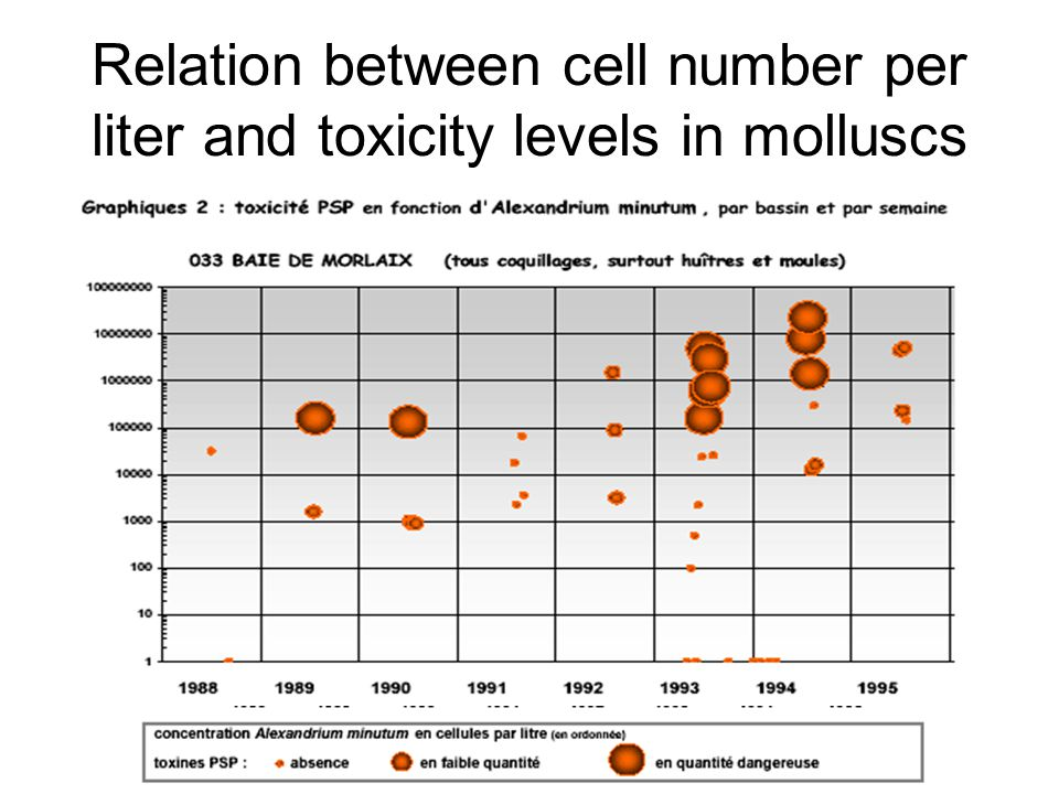 Relation between cell number per liter and toxicity levels in molluscs