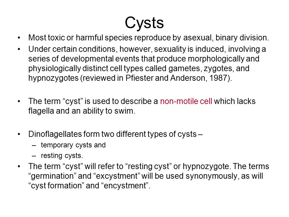 Cysts Most toxic or harmful species reproduce by asexual, binary division.