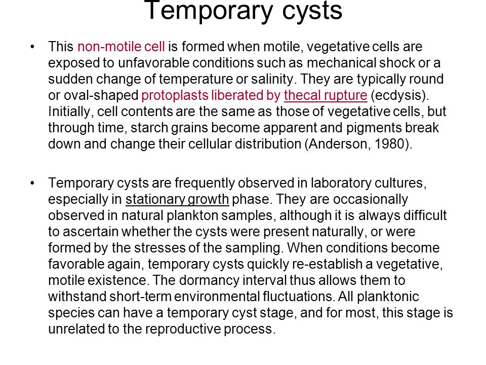 Temporary cysts