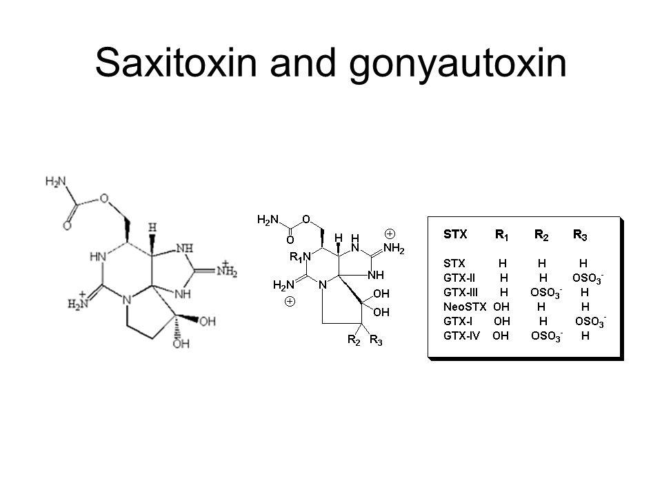 Saxitoxin and gonyautoxin
