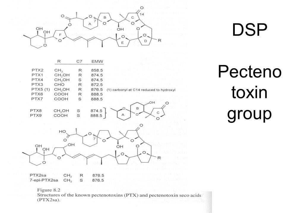 DSP Pectenotoxin group