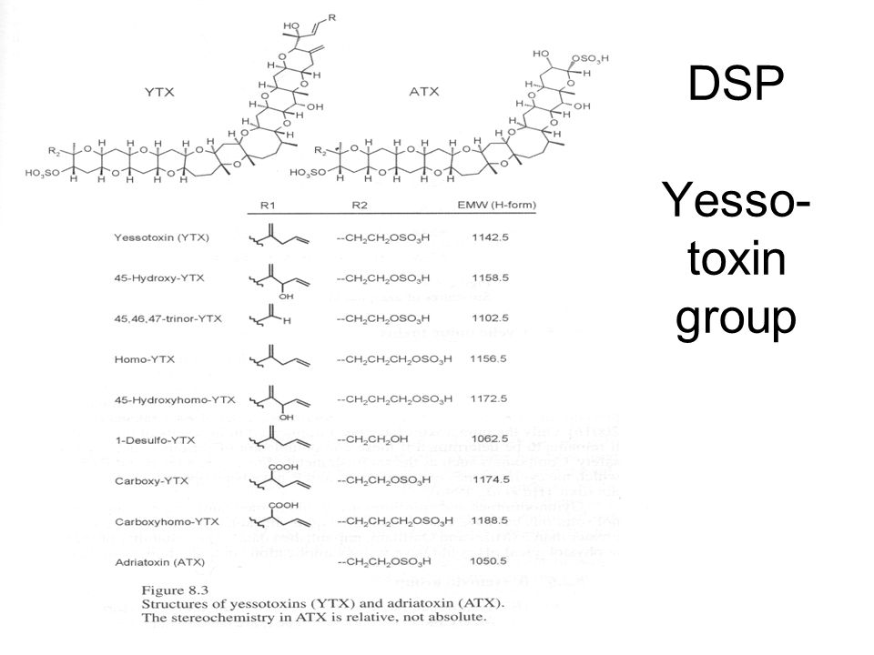DSP Yesso- toxin group