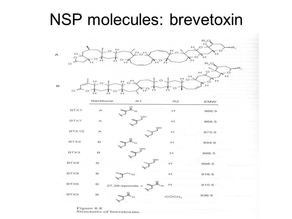 NSP molecules: brevetoxin