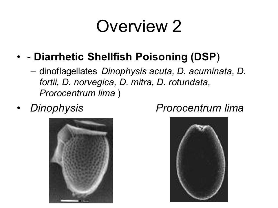 Overview 2 - Diarrhetic Shellfish Poisoning (DSP)
