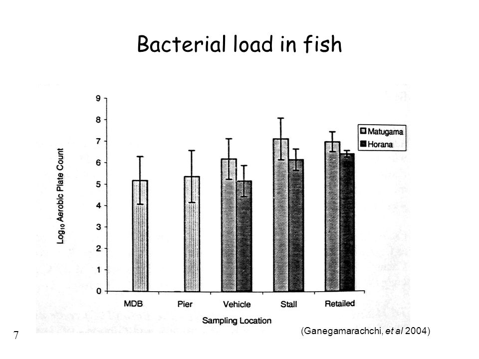 Bacterial load in fish (Ganegamarachchi, et al 2004)