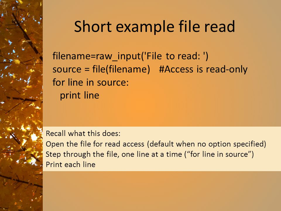 Short example file read