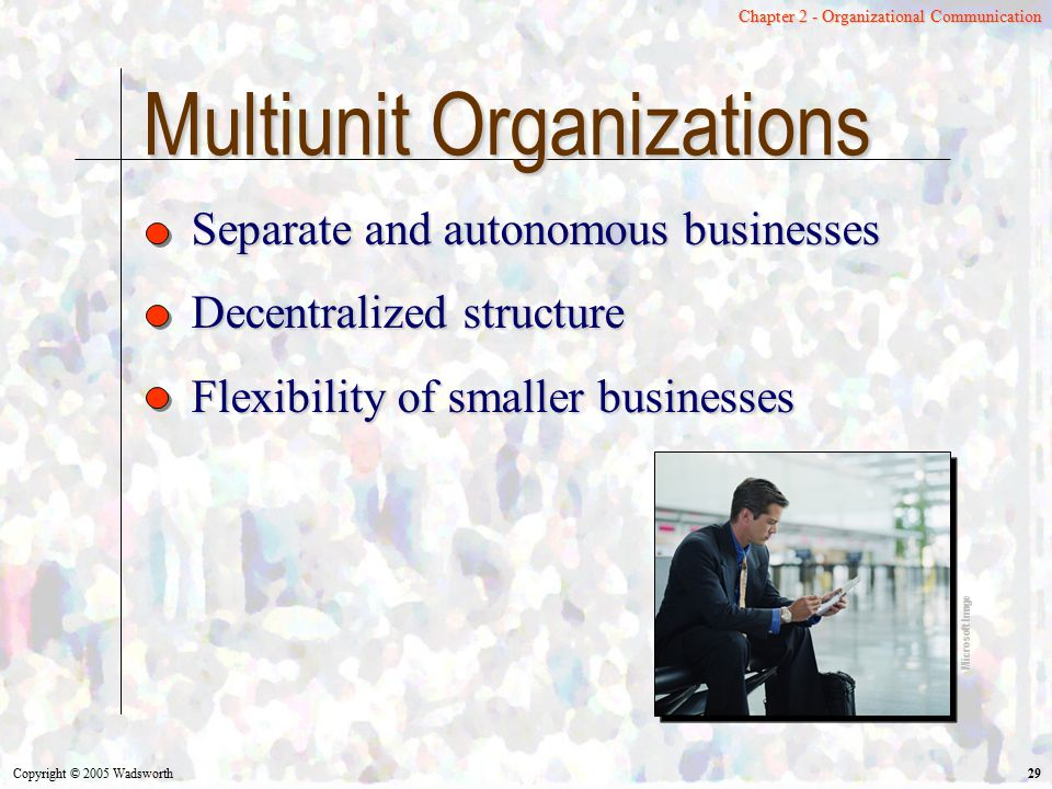 Multiunit Organizations
