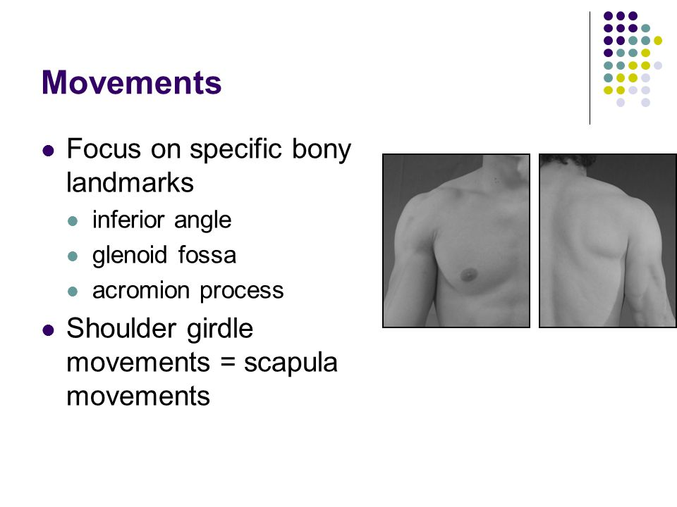 Movements Focus on specific bony landmarks