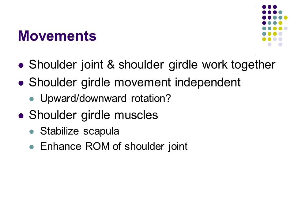 Movements Shoulder joint & shoulder girdle work together