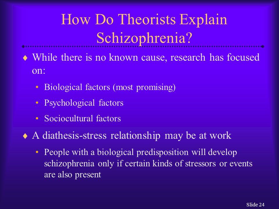 How Do Theorists Explain Schizophrenia