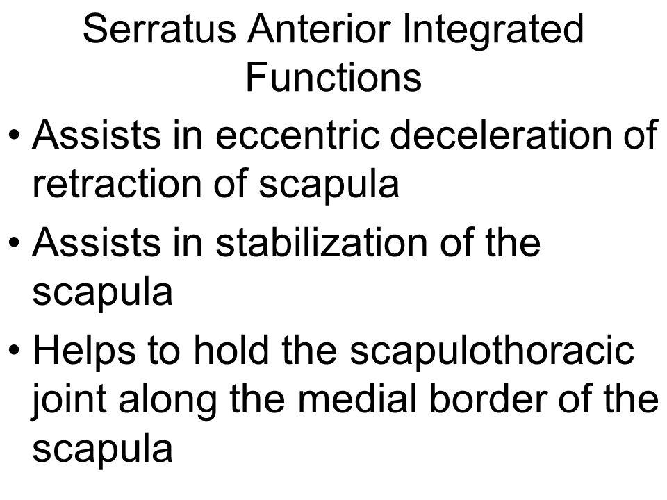 Serratus Anterior Integrated Functions