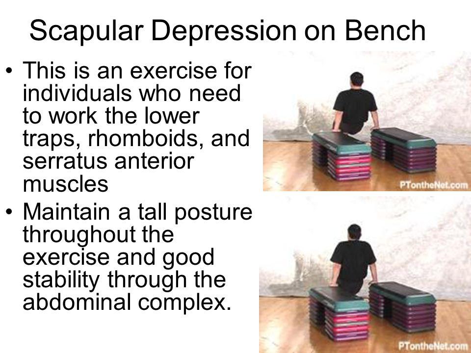Scapular Depression on Bench
