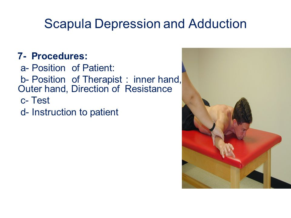 Scapula Depression and Adduction