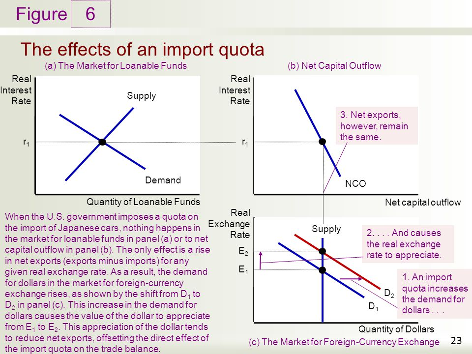 The effects of an import quota