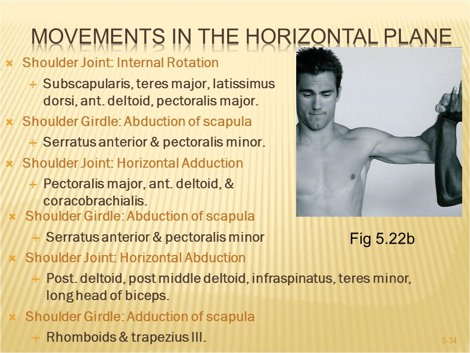 Movements in the Horizontal Plane