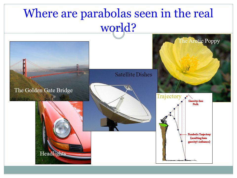 Where are parabolas seen in the real world