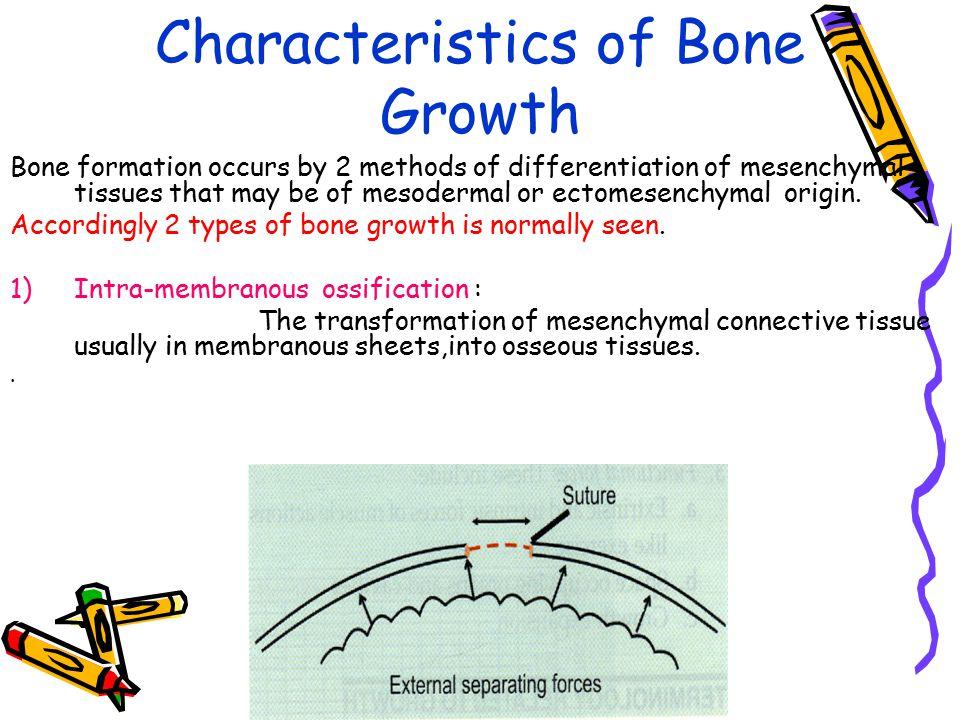Characteristics of Bone Growth