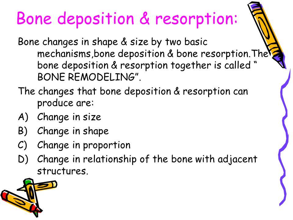 Bone deposition & resorption: