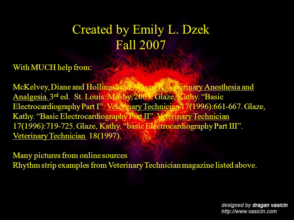 Created by Emily L. Dzek Fall 2007 With MUCH help from: