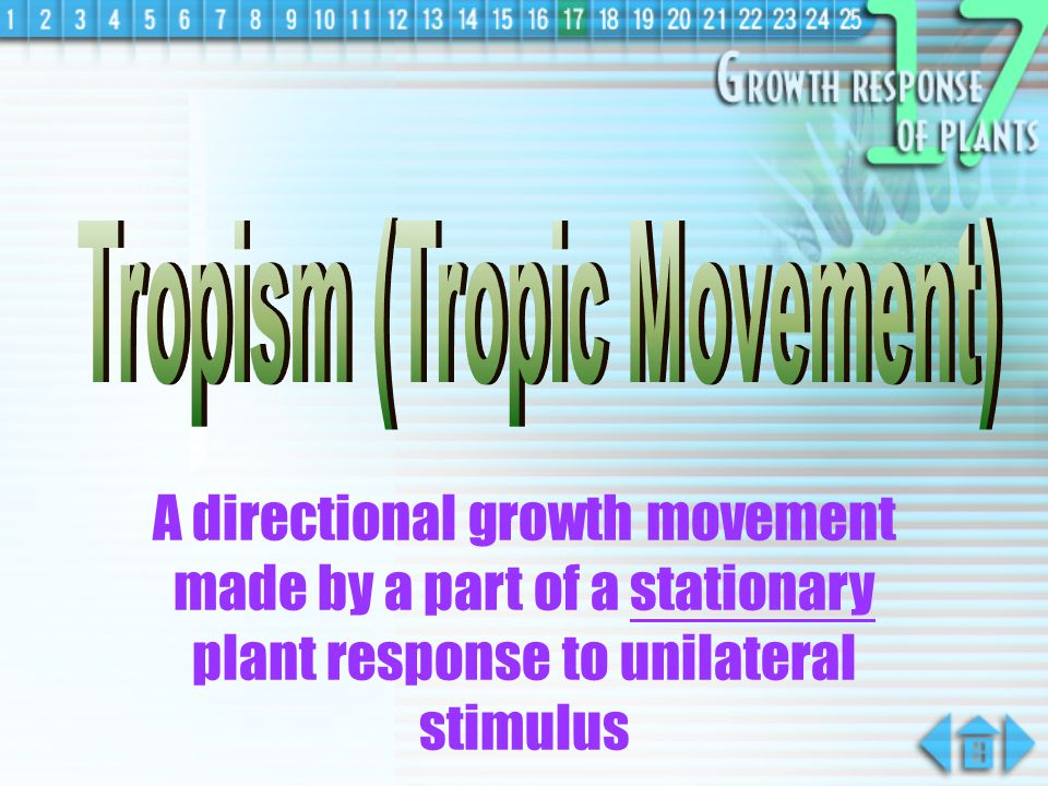 Tropism (Tropic Movement)