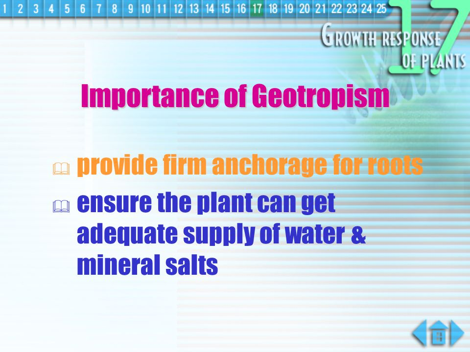 Importance of Geotropism