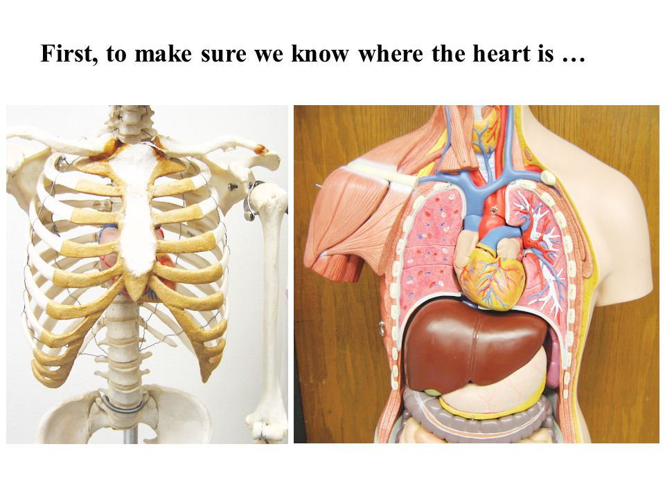 First, to make sure we know where the heart is …