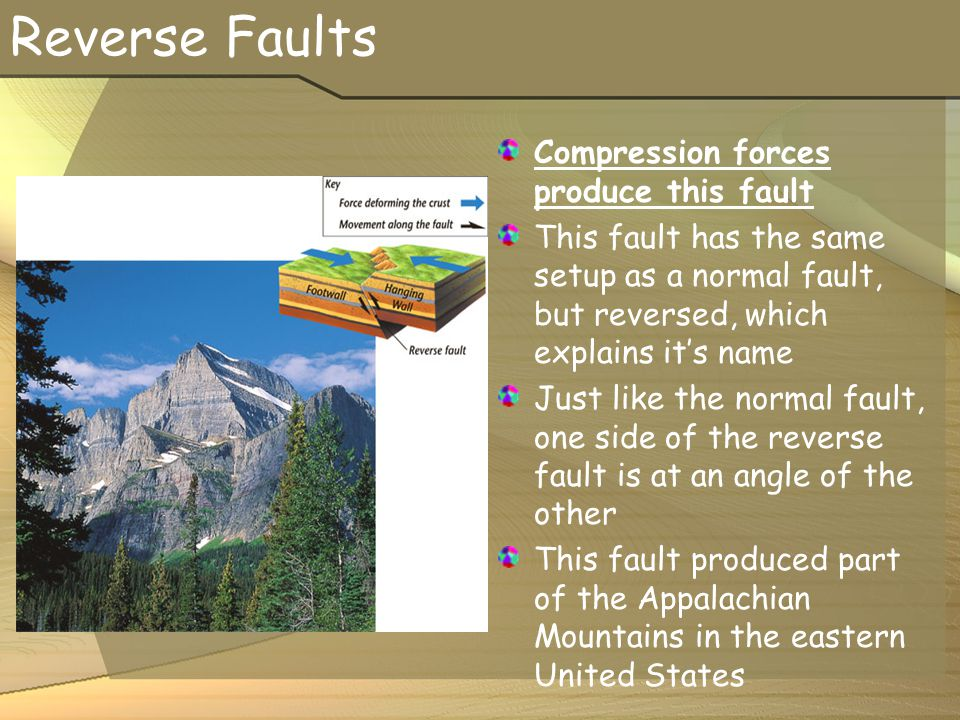 Reverse Faults Compression forces produce this fault