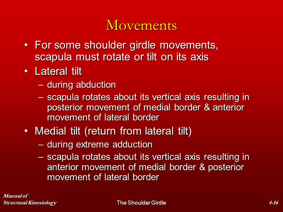 Movements For some shoulder girdle movements, scapula must rotate or tilt on its axis. Lateral tilt.