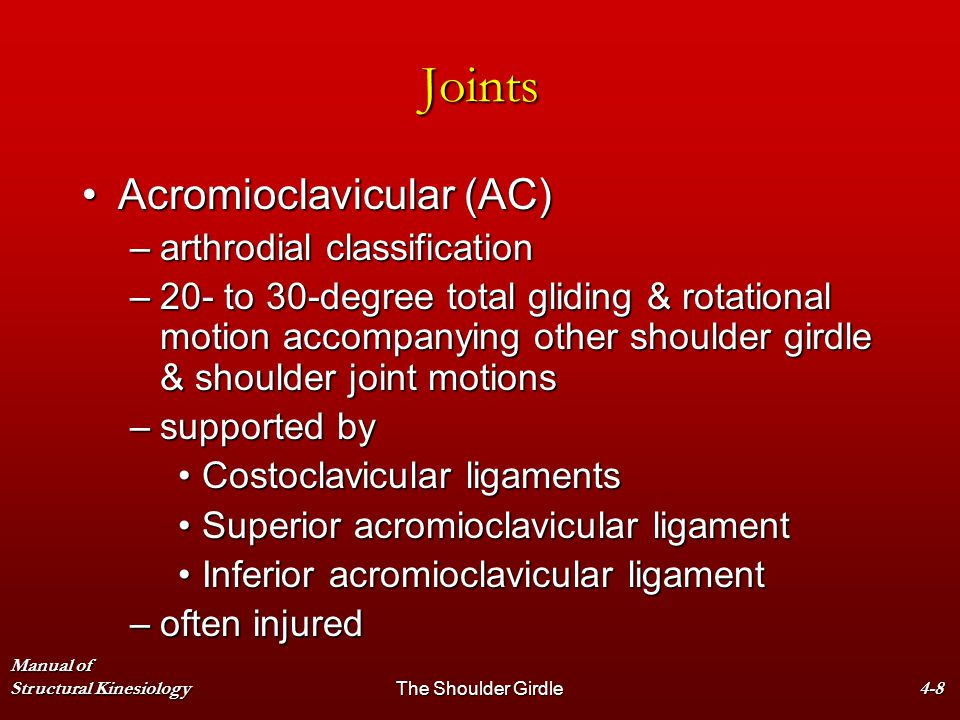 Joints Acromioclavicular (AC) arthrodial classification