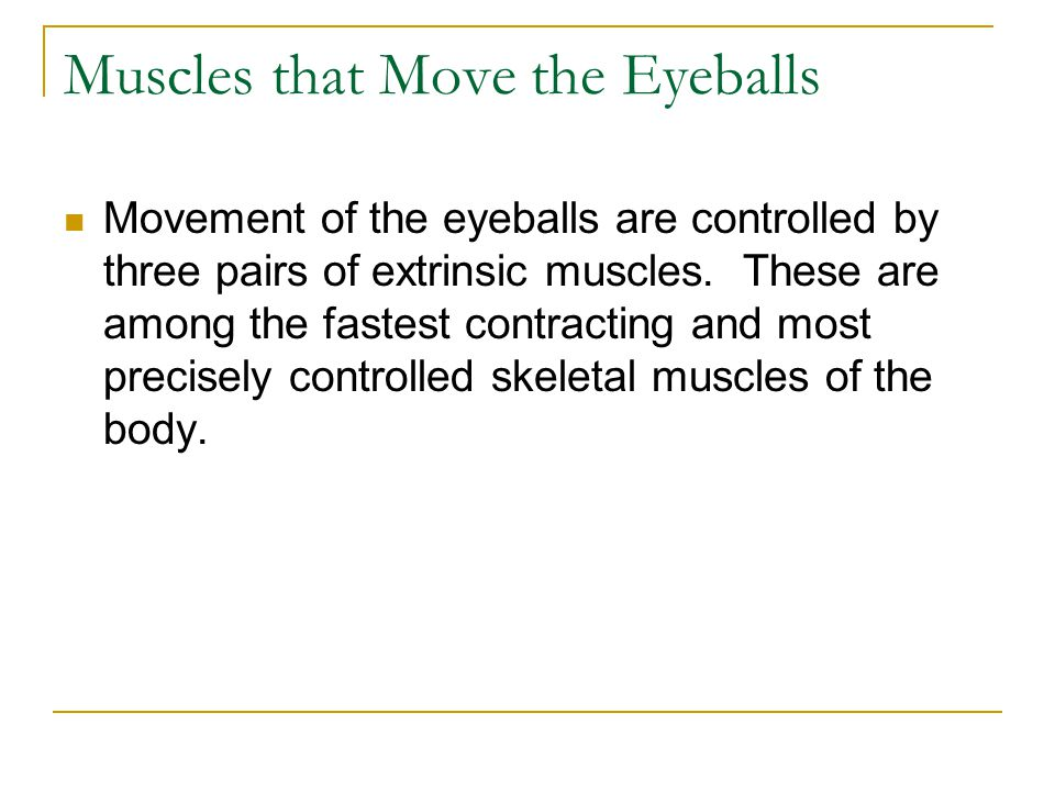 Muscles that Move the Eyeballs