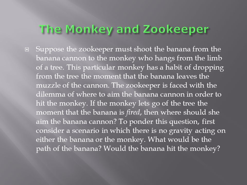 The Monkey and Zookeeper